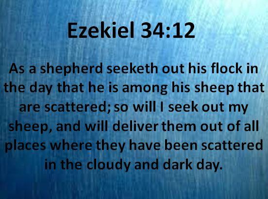 Ezekiel 34_12